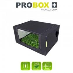 PROBOX Propagator M,...