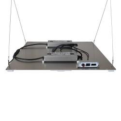 Budget LED Quantum board -...