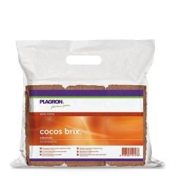 Plagron Cocos Brix Box 6ks, 9L