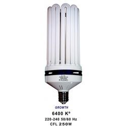 úsporná lampa Cooltech 250W - růst