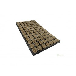 Agra-Wool sadbovací kostka 2,5*2,5 cm vč. Sadbovače, krabice 1386 ks